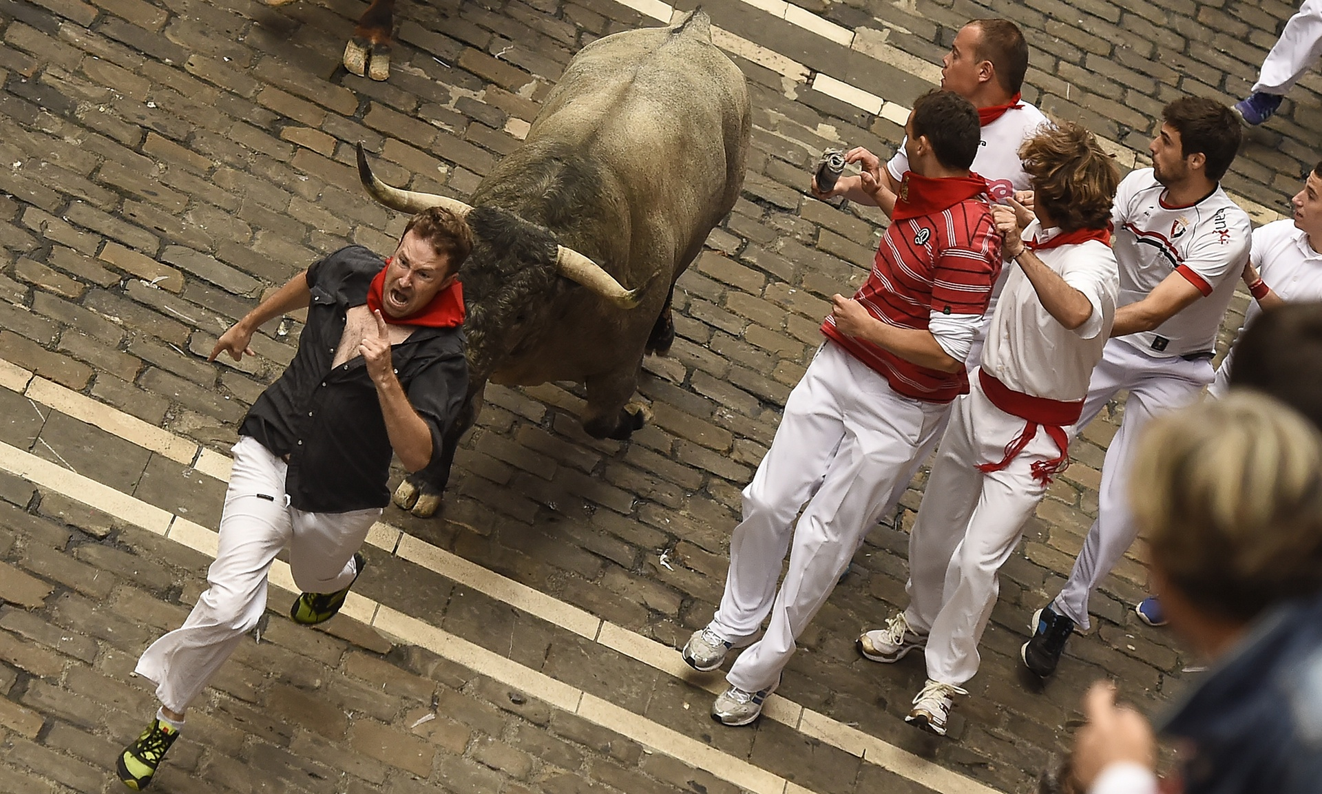 running with bulls Running of the bulls history few foreigners who actually dare run with the bulls know the rich history surrounding this deadly event the history of spain's bull run can be traced back over a thousand years when wild bulls migrated across spain.