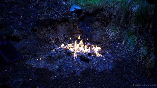 New Zealand Fire