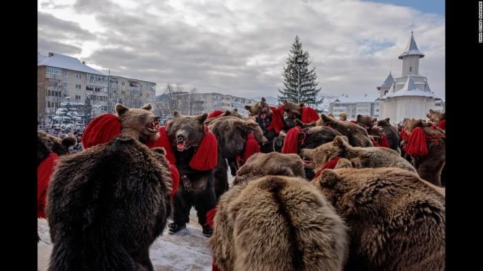 Bear Dancers