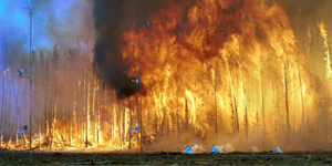 11_1024px-northwest_crown_fire_experiment
