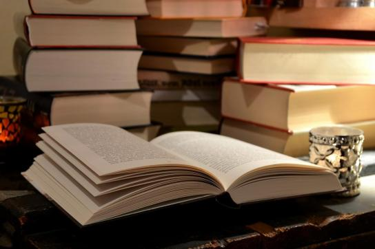 20150115183825-books-reading